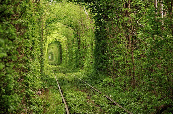 tunnel-of-love-tourism-on-the-edge-41